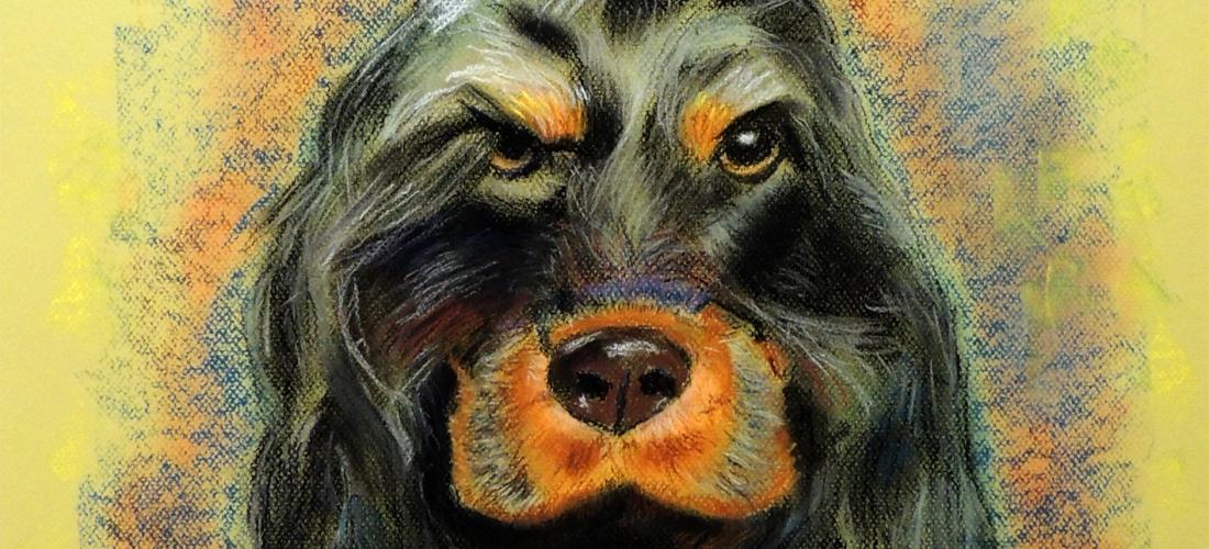 animales que nos miran (3)