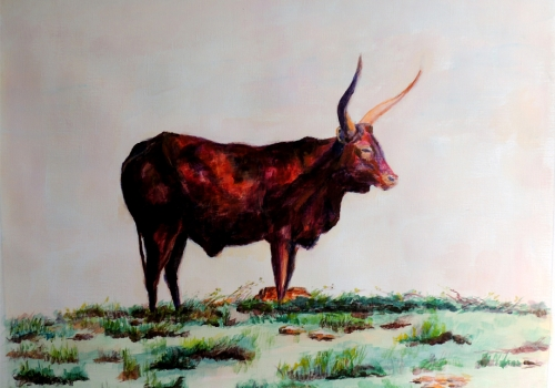 toro de Cabarceno